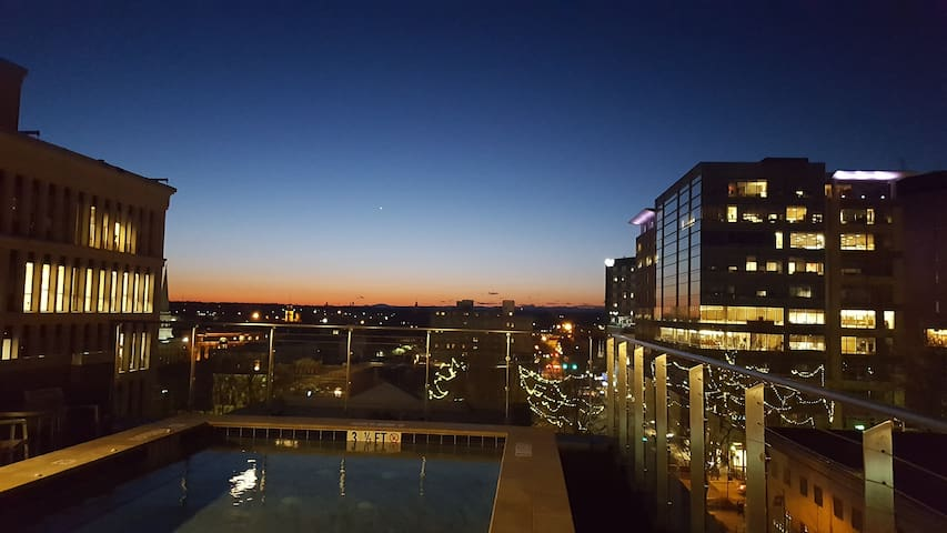 Downtown City Apartment with City Views - Greenville - Apartament