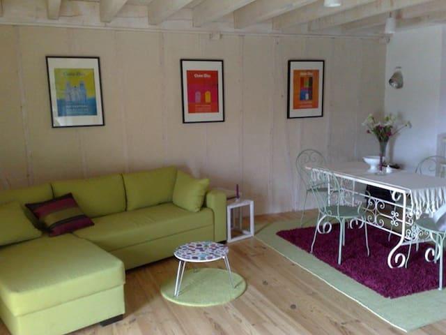 Charming apartment-Le Puy en Velay - Saint-Paulien - Wohnung