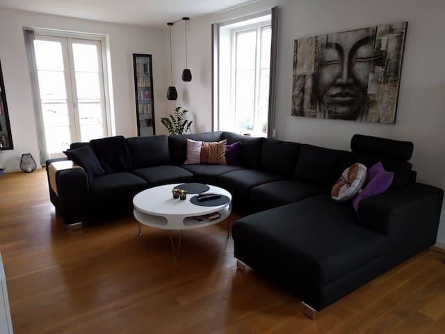 Cosy 2 bedroom apartment close to Copenhagen - Hvidovre