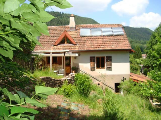 romantisches Ökohaus am Waldrand - Luvigny - Huis