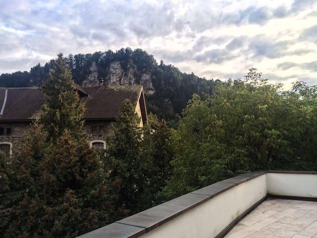 Penthouse Flat Feldkirch Citycenter - Feldkirch - Appartement