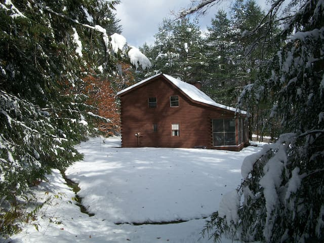 Cozy & private log cabin on 6 acres - Jamaica