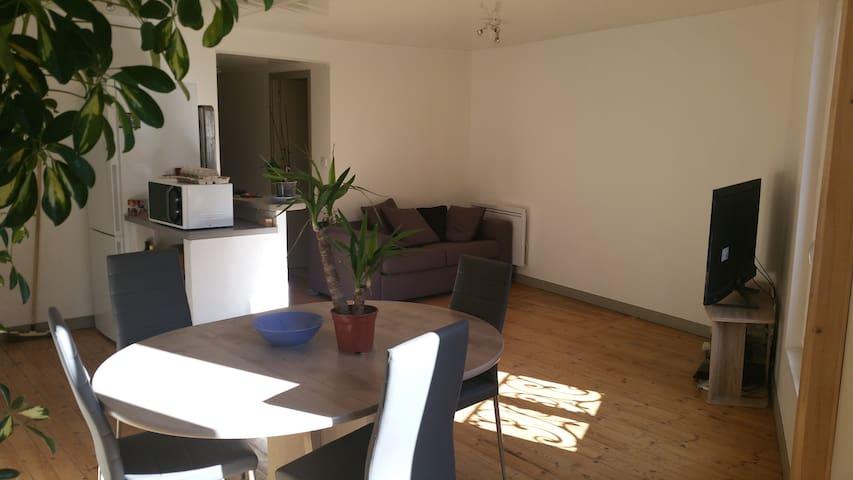 appartement centre du puy en velay - Le Puy-en-Velay - Apartament