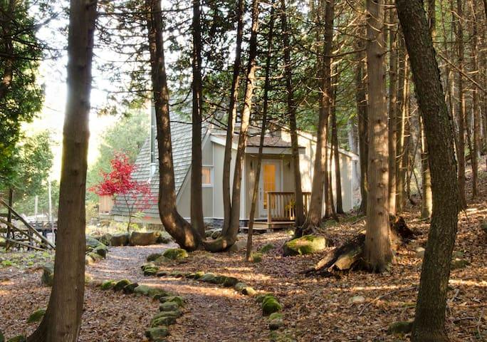 Kimberley Creek Cabin - Kimberley - Bed & Breakfast