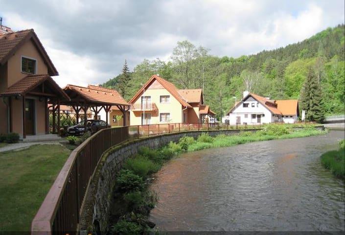 Сдадим уютный дом в Карловых Варах - Karlovy Vary - Hus