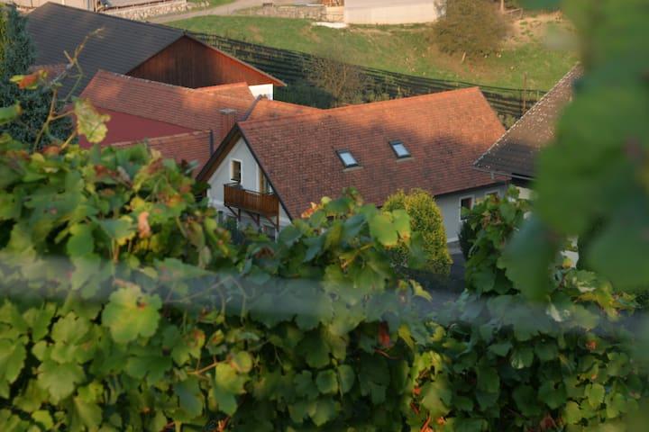 """Winzerwohnung """"Weinblicke"""" - Gemeinde Riegersburg - Hus"""