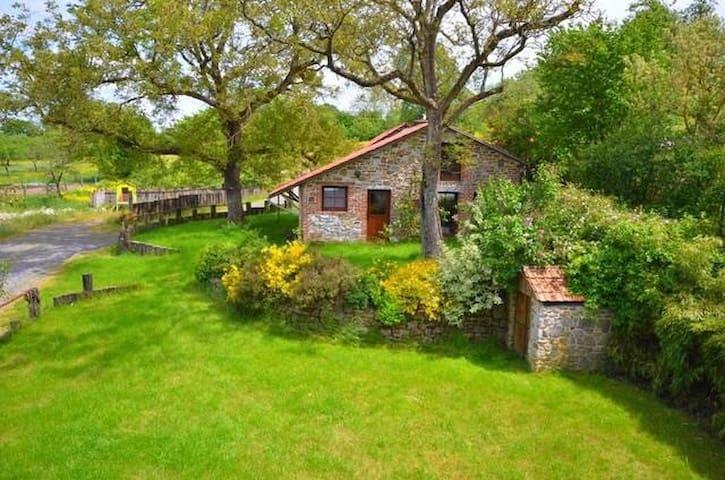 Cottage du noyer ( 3 vallées ) - Couvin - Casa