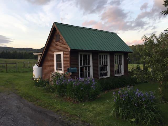 Super cozy cabin - Hyde Park - Бунгало