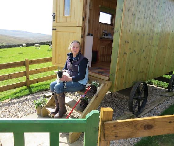 Pry House Farm Hut-in-the-Hills Shepherd's Hut - Keld - Hut