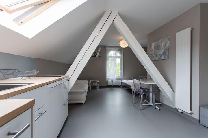 Studio Bussigny-près-Lausanne 7 - Bussigny-près-Lausanne - Lägenhet