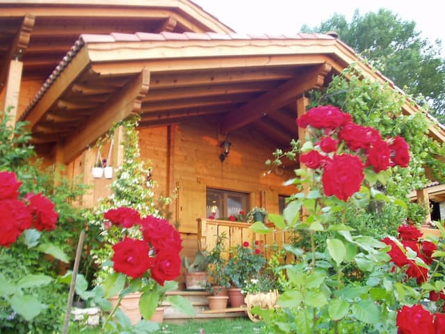 B&B Paraiso Madera, comfort in un angolo di natura - Villa Bartolomea - Pousada