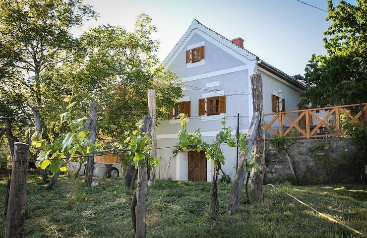 Ház a Szent György-hegyen - Hegymagas - Huis