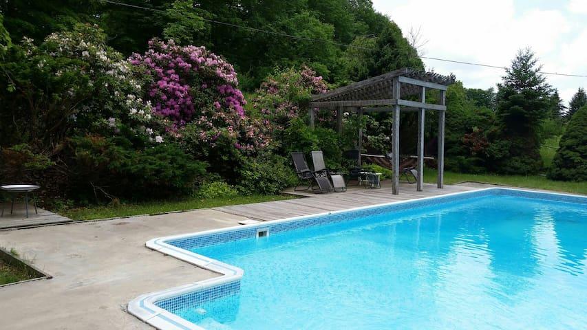 Catskills Modern Cabin Private Pool - Swan Lake - Casa