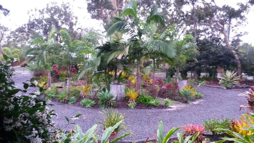 Bush & Beach home, resort style swimming pool. - Cooloola Cove - Casa