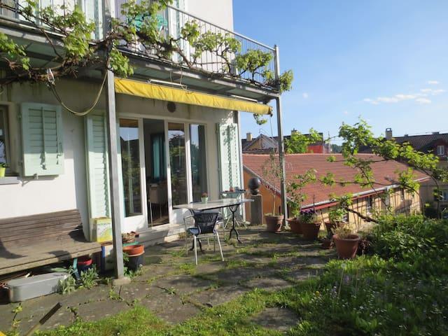 Kleines, schmuckes Häuschen - Schaffhausen - Hus