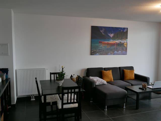 Appartement en attique orienté plein Sud - Lampertheim - Appartement