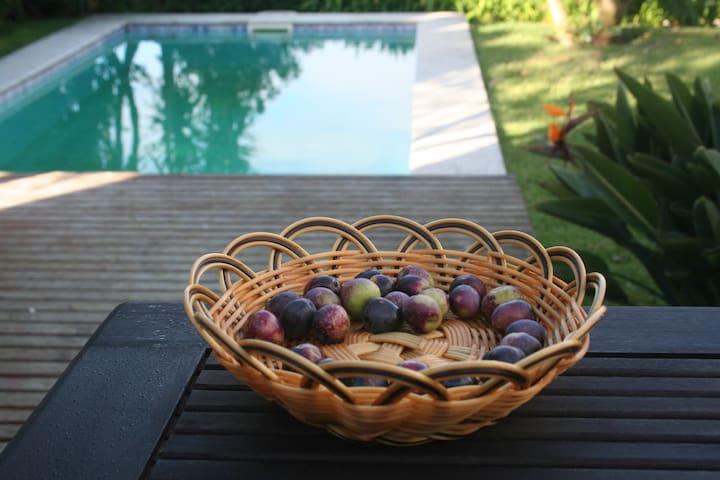 HOMEinLAND of Terroso l Pool, Wi-Fi & Chimenea - Terroso - Casa