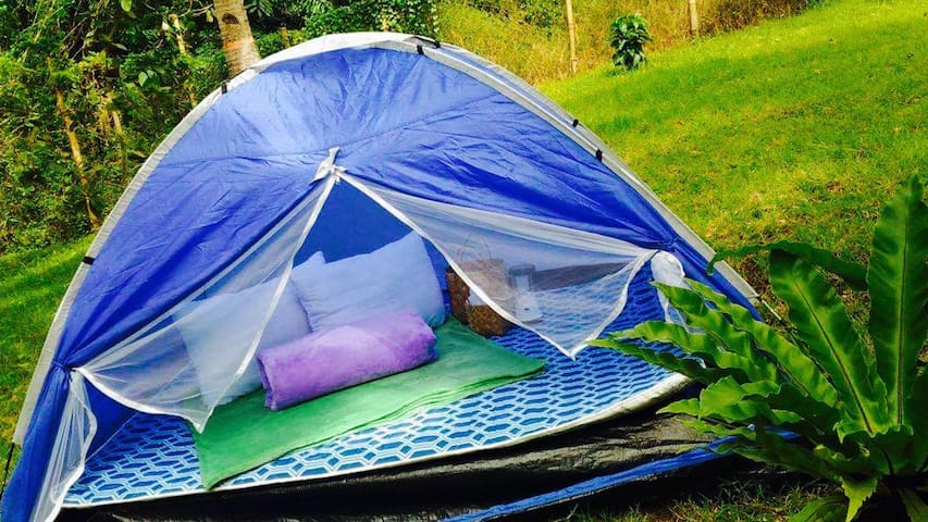 Glamping next to Nature - Tent 4 - Lemery
