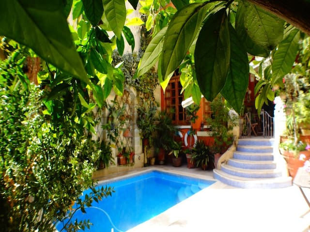House with Private swimming pool - Qormi - Huis
