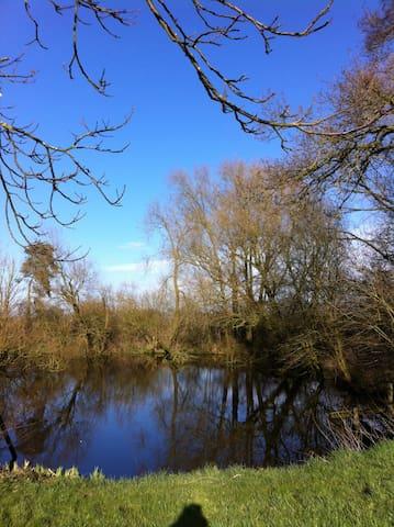 Yurt Eco Shropshire, own wildlife pool & lawn - Myddle