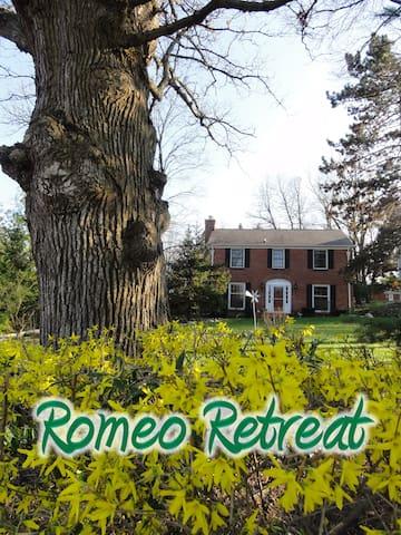 Romeo Retreat - French Country Room - Romeo - Дом