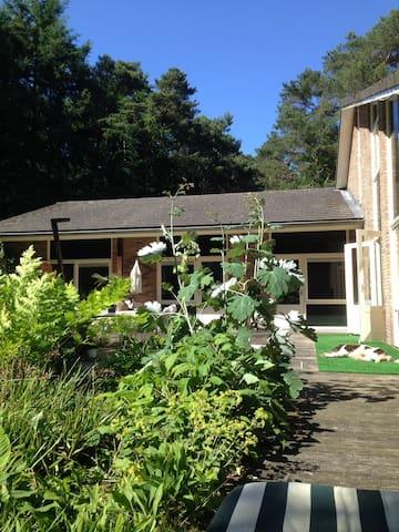 Mooie vrijstaande villa aan bosrand - Veluwe - Vila