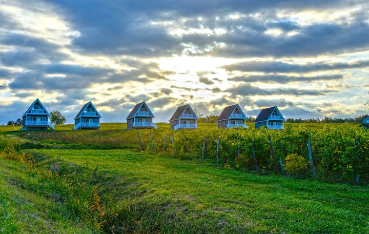The Vineyard Villas 4 - Burdett