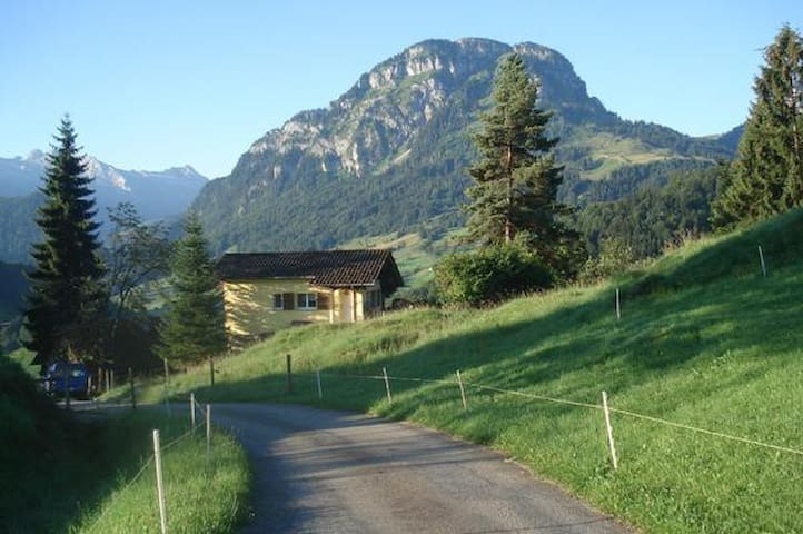 comfortable cottage in the alps - Vorderthal - 小屋