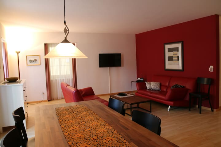 70sqm family apartment in the SPA quarter - Baden - Daire