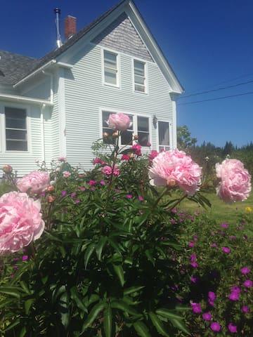 Harmony Cottage Lubec Maine - Lubec - Rumah