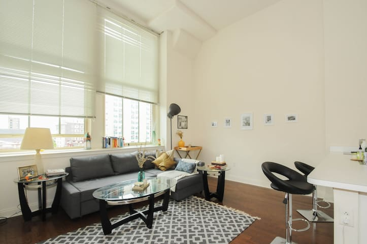 850sqft 1BRLoft Center City HEART - Philadelphie - Loft