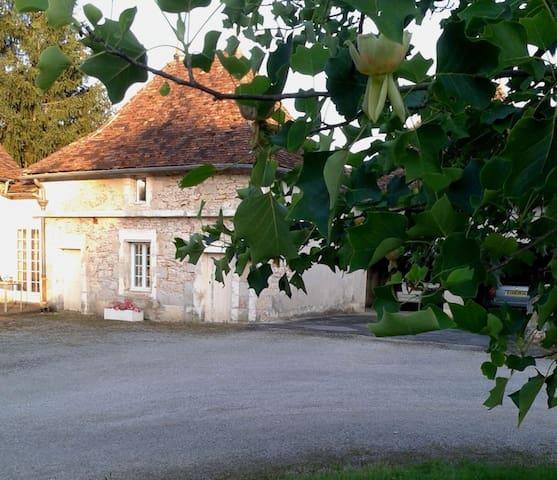 Dovecote cottage with Huge Pool - Saint-Martial-d'Albarède - Ev