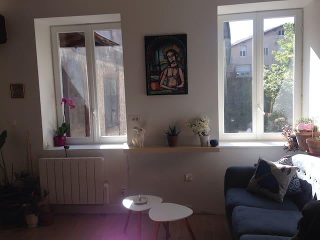 Appartement Cosy. Vienne centre. Au Calme - Vienne - Appartement