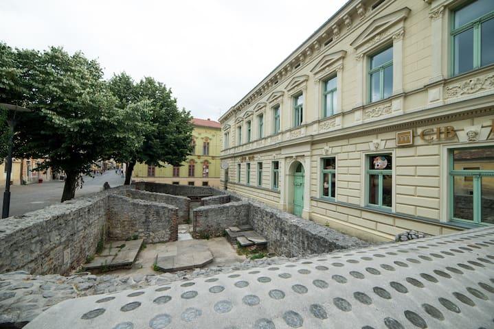 Elegant, Central, Apartment, Pecs - Pécs - Apartamento