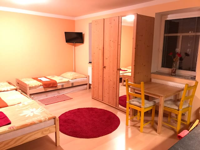 Full equipped flat near by bus and train station - České Budějovice - Appartement