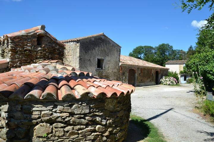 Domaine de Massillargues - Saissac - Hus