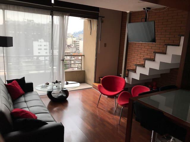 Dpto Loft Santiago Centro (Lastarria/Bellas Artes) - Santiago - Appartement