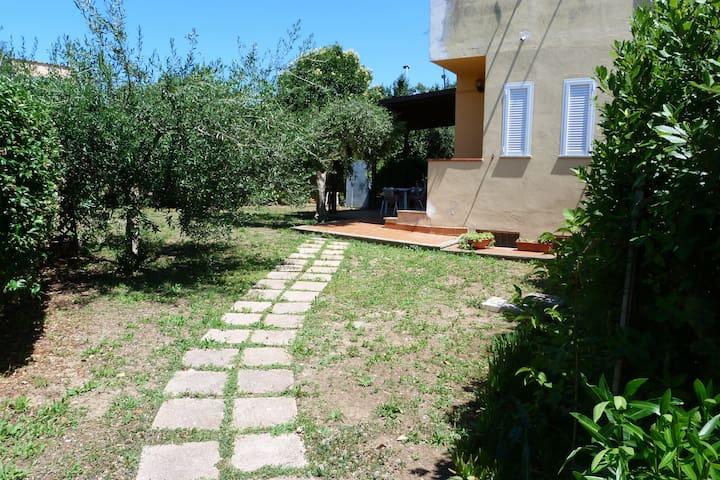 Il Portico tra gli Ulivi - Pescia Romana - Apartament