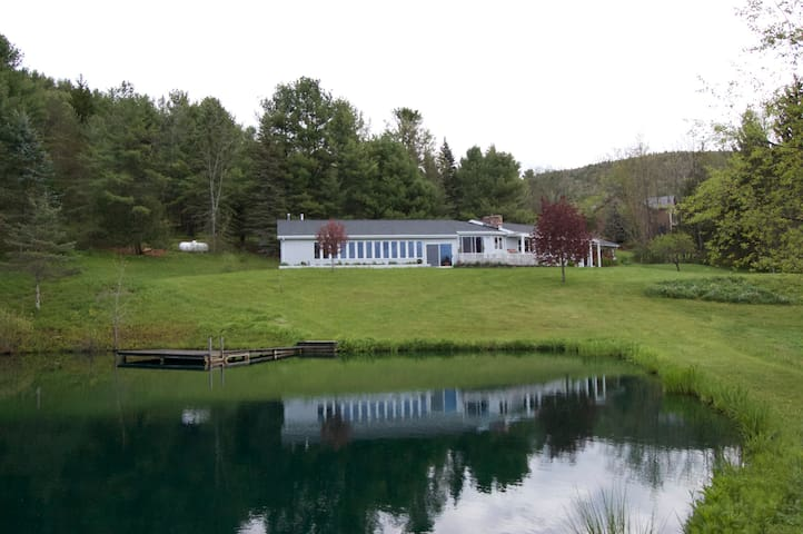 The Pool & Pond House - Middleburgh - Haus
