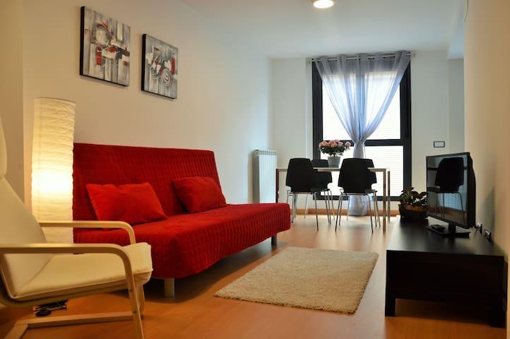 APARTAMENTOS JURRAMENDI ESTELLA - Estella - Appartement