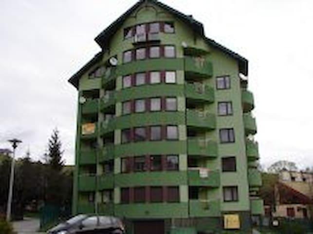 Apartament Wszelkie wygody - Krynica-Zdrój - Apartamento