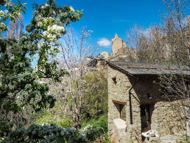 Rare! Pretty rustic barn in stones and wood - Sauto - Huis
