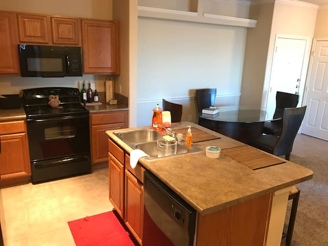 Spacious single bedroom apartment (up to 4 people) - Houston