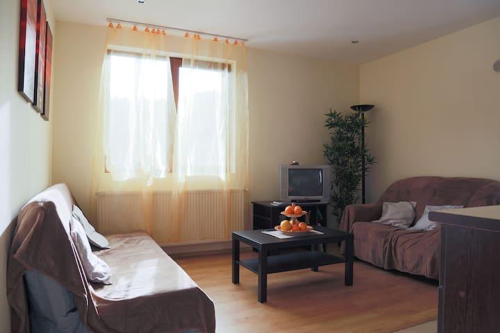 Nice & Cozy Apartment - Sinaia - Leilighet
