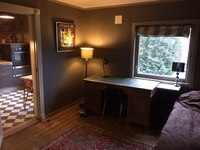 Komfortabel leilighet Sarpsborg sentrum - Sarpsborg