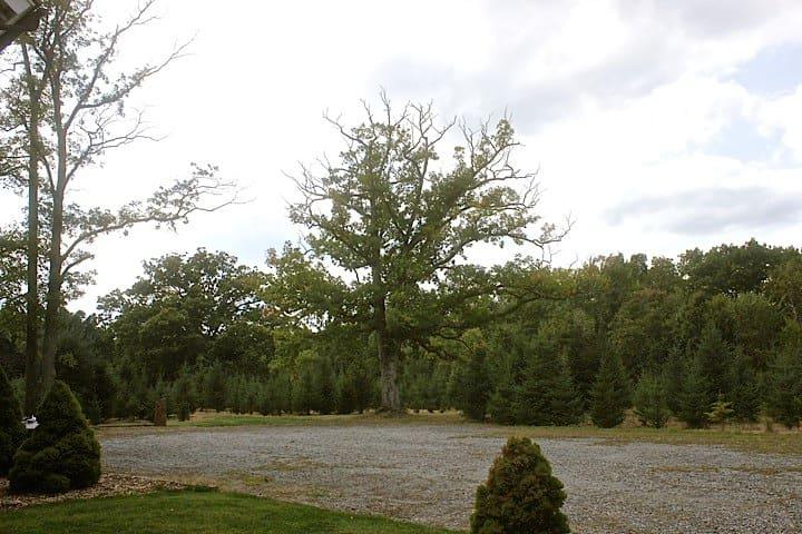 Stone Oak Tree Farm White Spruce Rm - Slate Hill - Bed & Breakfast