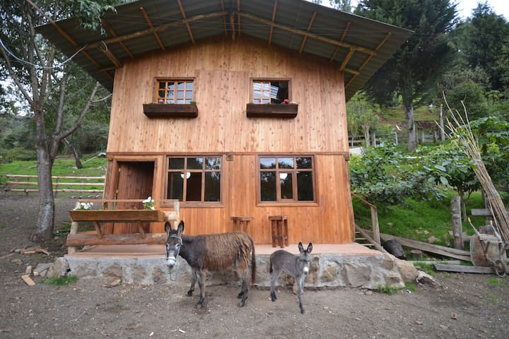 Hacienda Chan Chan - A Dairy Farm Chalet - Куенса - Дом
