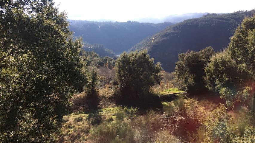 Quinta dos Milagres - Pedrogao Grande  - Houten huisje