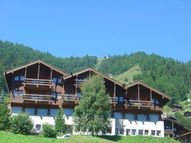 Charming  Mountain House Grimentz - Grimentz - Appartement