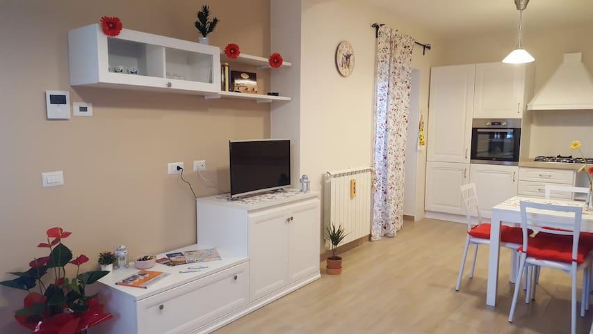 Suite 30 - Ciampino - Apartment